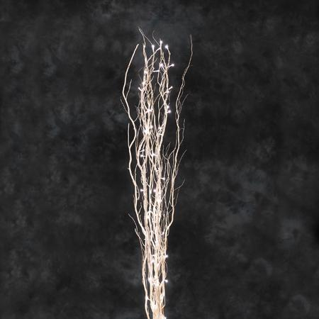 Wilgentakken Afmeting: H150 cm