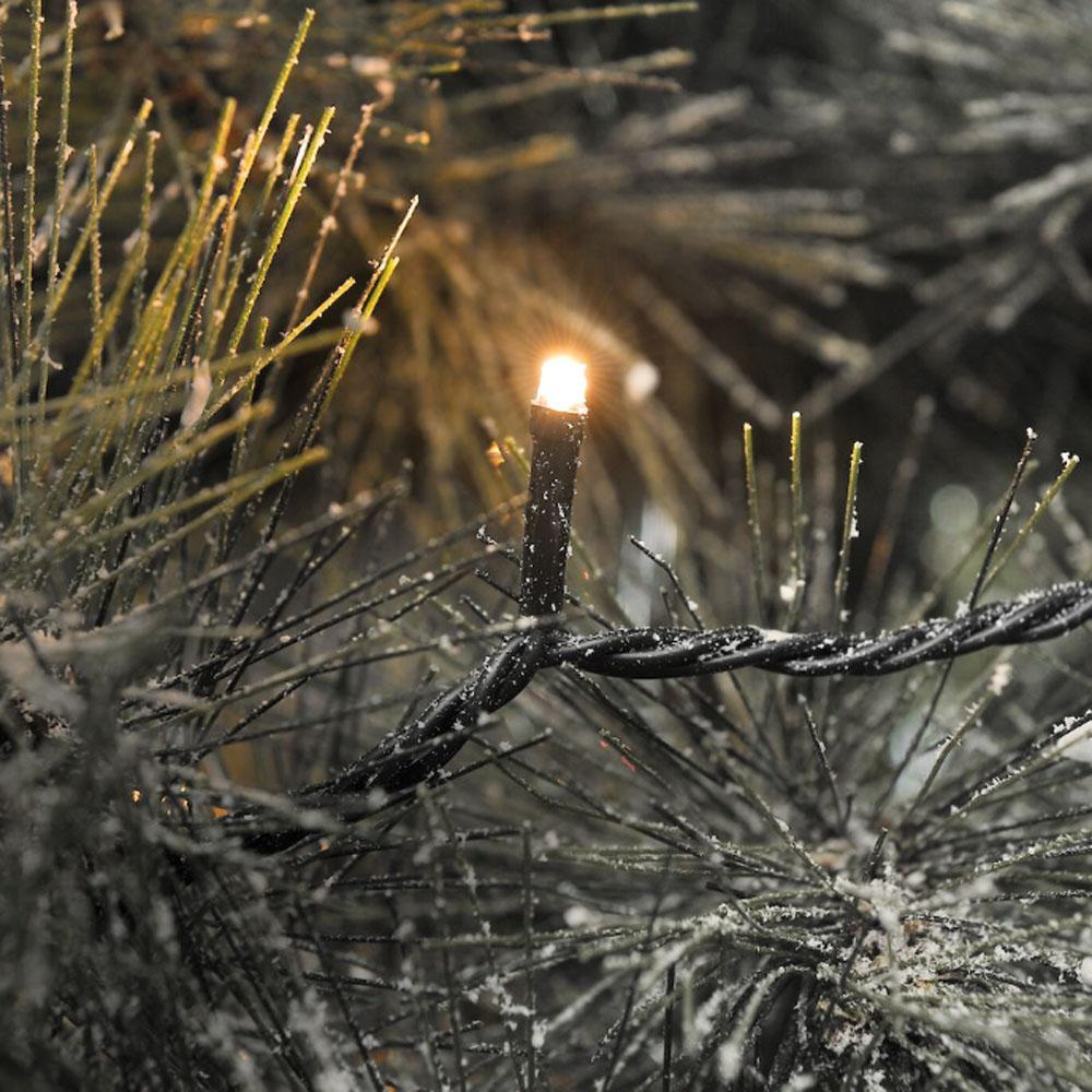 Kerstboom Verlichting Quality4All