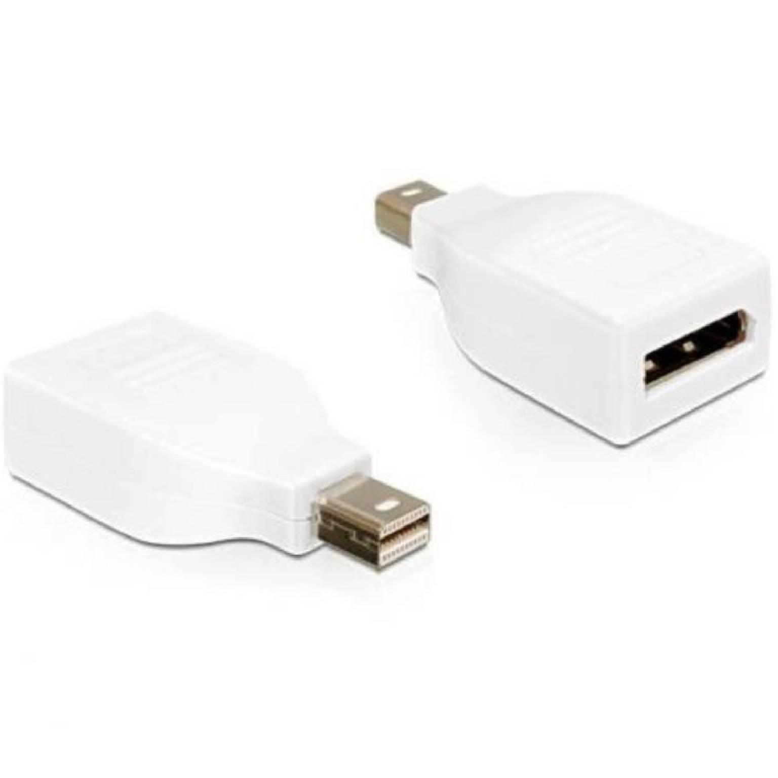 Mini DisplayPort naar DisplayPort adapter