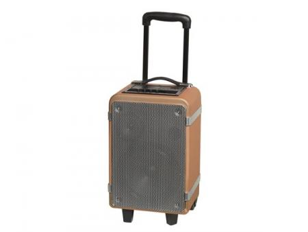 Afbeelding van TSP 150 Bluetooth trolley speaker with 15W output Denver Electroni